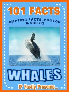 101whales