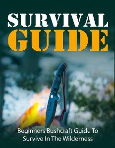 Survival-Gude-Cover-Jeffrystuff