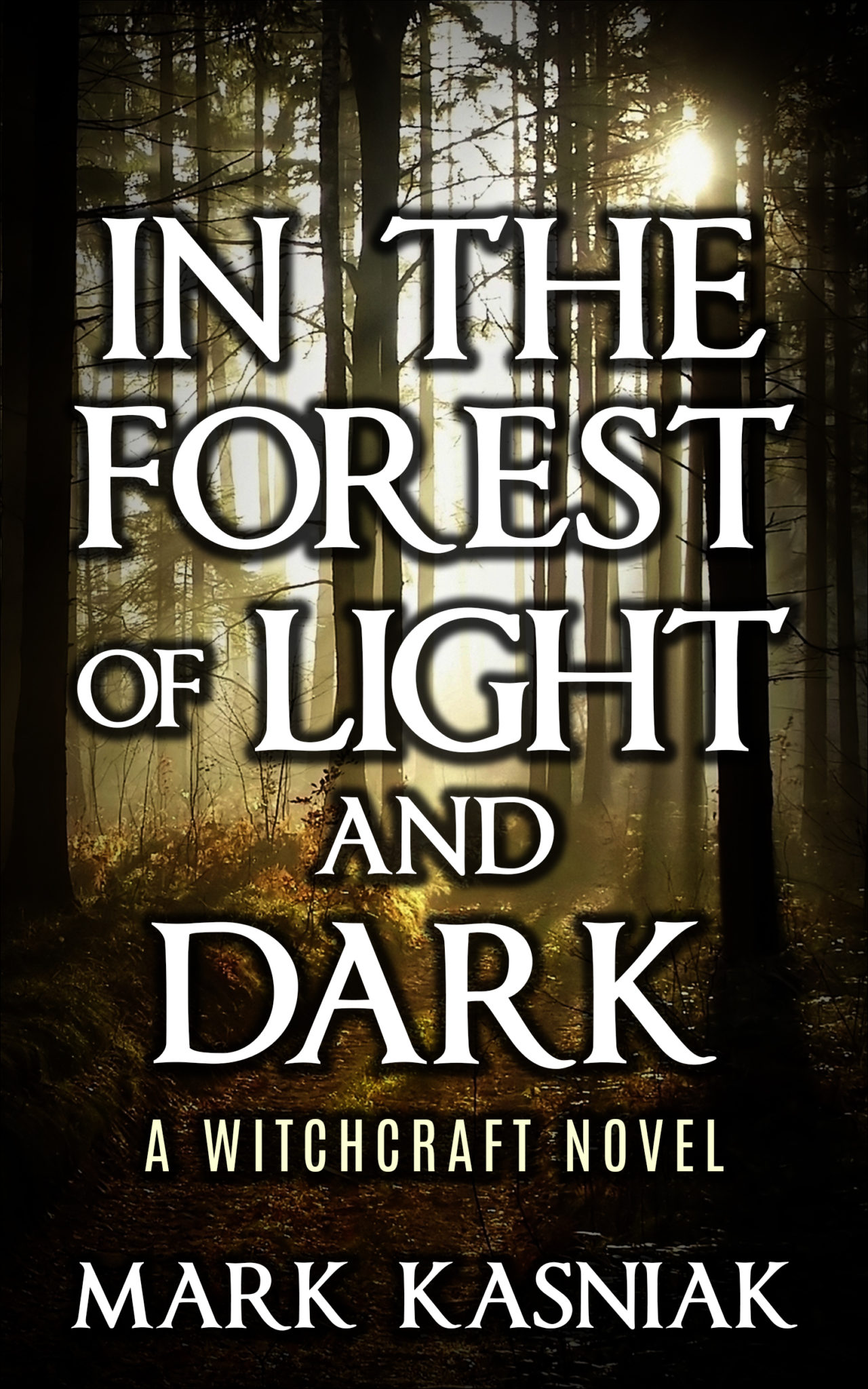 an analysis of the book the light in the forest The light in the forest is a 1958 film based on a novel of the same name first published in 1953 by us author conrad richter the film was produced by walt disney .