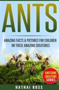 FREE: Ants: Amazing Facts & Pictures for Children on These Amazing Creatures by Hathai Ross